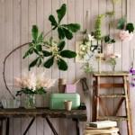 La importancia de las plantas en la vivienda